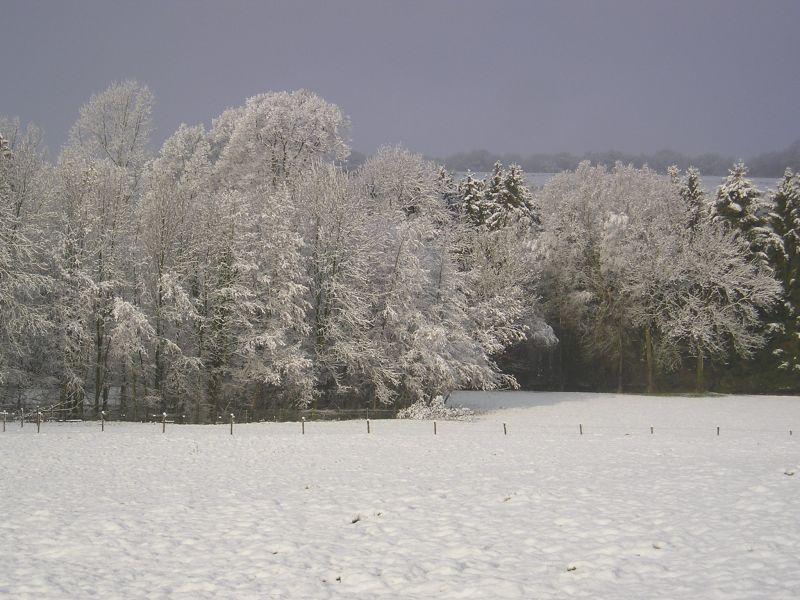 winter_12