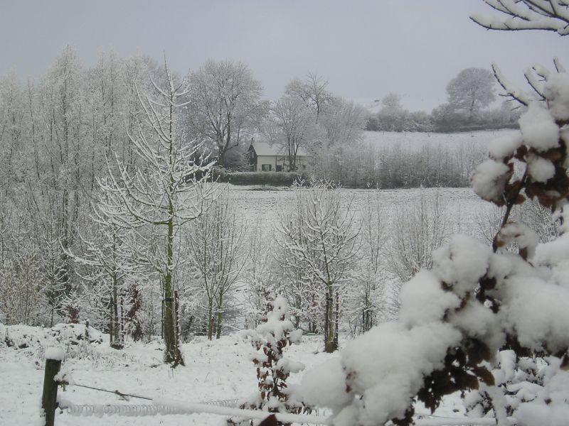winter_13